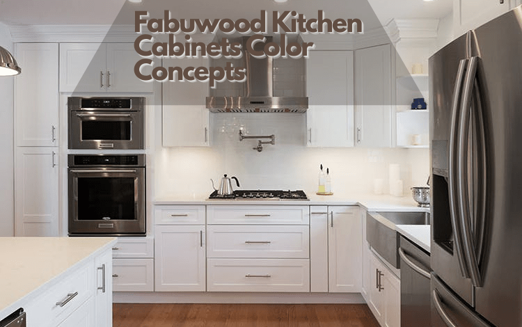 Fabuwood Kitchen Cabinets Color Concepts