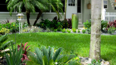Photo of Everything That A Good Irrigation Company Is Able To Do For Anyone!