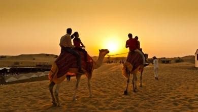 Photo of Camel Trekking Dubai