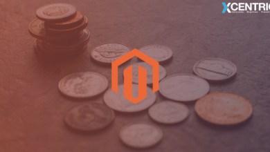 Photo of Magento Ecommerce Website Development: How To Reduce Magento Development Costs
