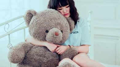 Photo of How to Care and Clean Your Teddy at Home