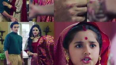 Photo of Watch Barrister Babu Best Hindi Drama
