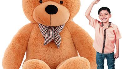 Photo of Best Teddy Bear Choosing Guide