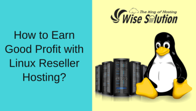 Photo of How to Earn Good Profit with Linux Reseller Hosting?