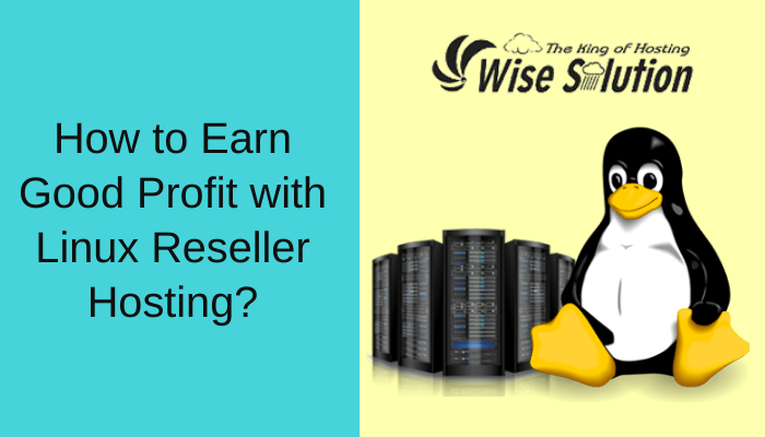 How to Earn Good Profit with Linux Reseller Hosting?