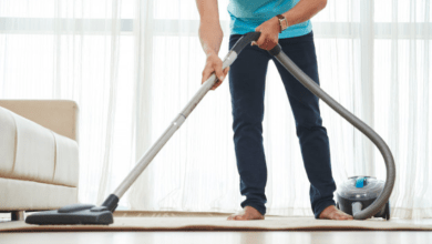 Photo of Professional Carpet Cleaning Company in Albany