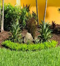 Photo of Your Guide to Landscaping | Turftim