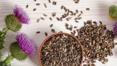 Photo of Milk Thistle- A Herbal Supplement
