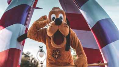 Photo of Disney Vacation Club Resale: Essential Tips When Selling Your Timeshare