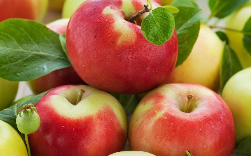 appelmoes met korstje.