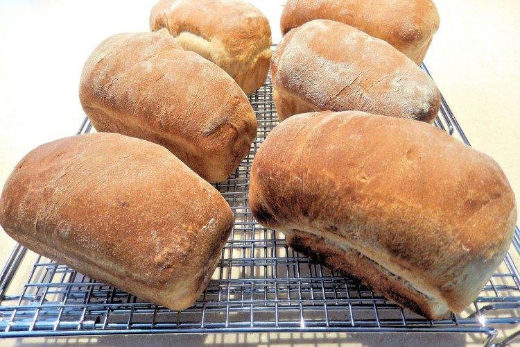 Receta mini panes italianos