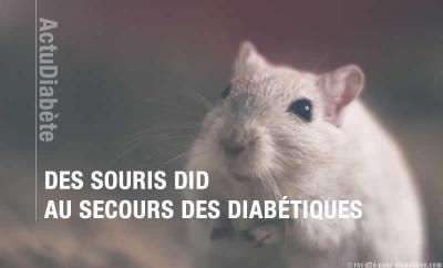 patch-diabete