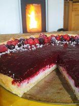 tarte panna cotta noix de coco et fruits rouges thermomix (34)