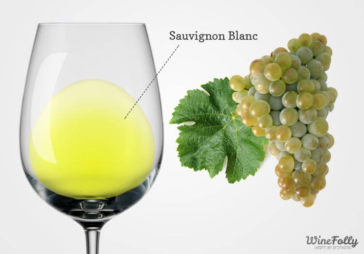 Sauvignon-blanc-wine-and-grapes