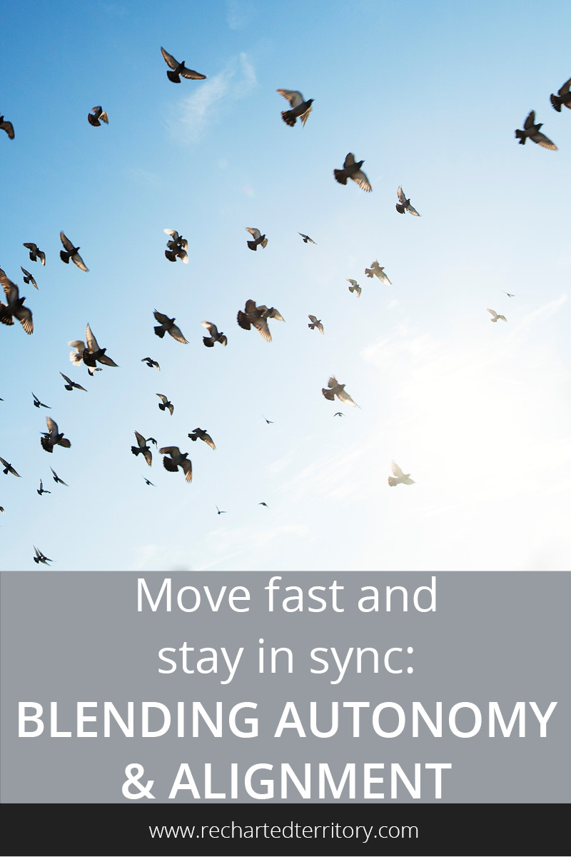 Move fast and stay in sync- Blending autonomy and alignment