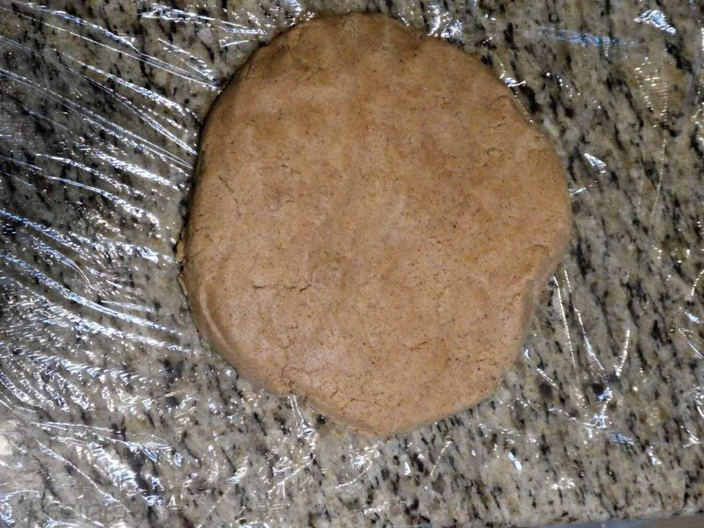 Gingerbread Biscuit - Step 3 - Form a disc and store