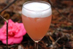 My Sherry Amore: Pink Grapefruit and Vodka Sour