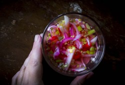 Quick Pickled Radishes (and scallions too!)