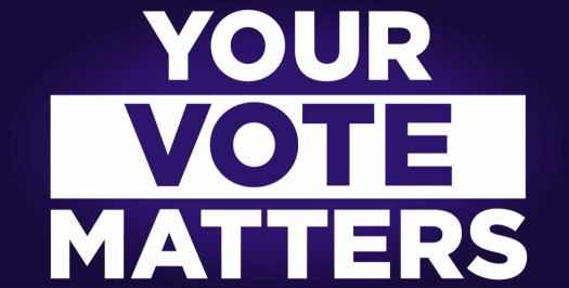 Every Vote Counts, Dammit! Recipes are merely a Suggestion K.C. Shomler