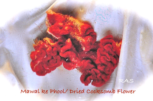 dried-cocksomb-flower for cooking