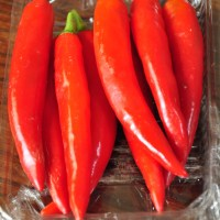 mild long red chillies-thailand/malaysia