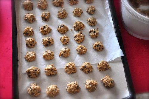 oatmeal chocolate chip cookies ion baking tray