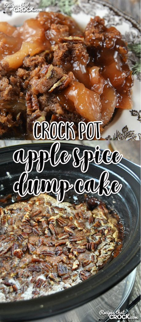 This Crock Pot Apple Spice Dump Cake is a crock pot adaption of a tried and true family recipe!
