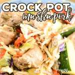 Crock Pot Mu Shu Pork