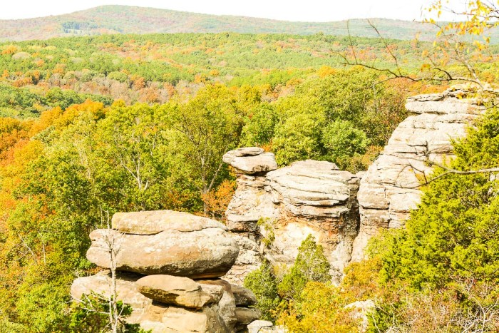 Garden of the Gods in the Shawnee National Forest has amazing scenic views.