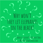 Why won't they let elephants on the beach?