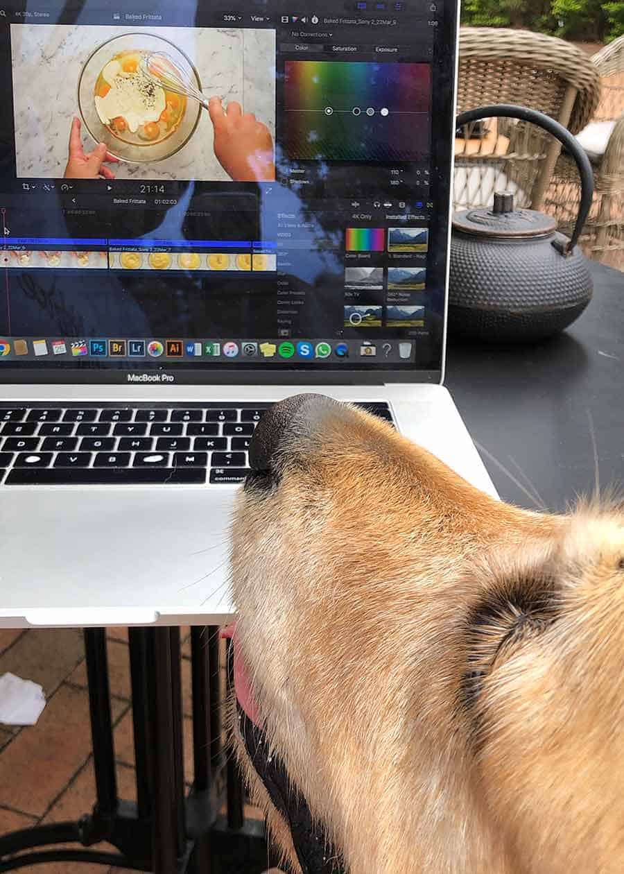 Dozer drooling over frittata video