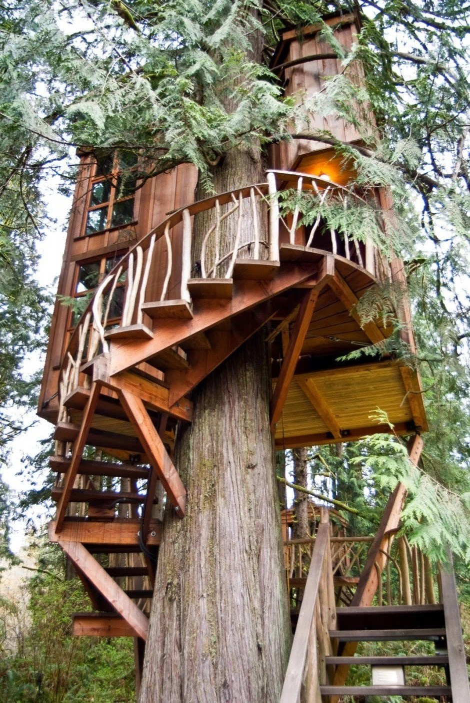 Worlds most popular treehousesResort Hotels with