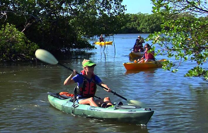 Kayaking in Naples - Florida