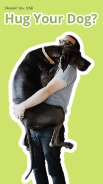Should You Still Hug Your Dog