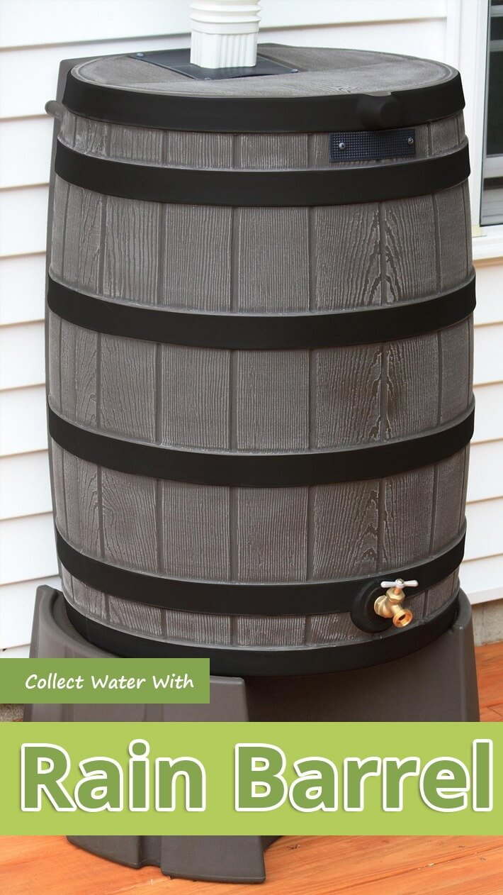 Collect Water With Rain Barrel