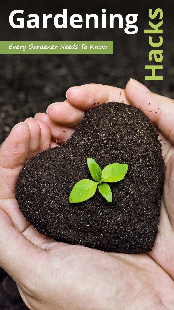 Gardening Hacks Every Gardener Needs To Know