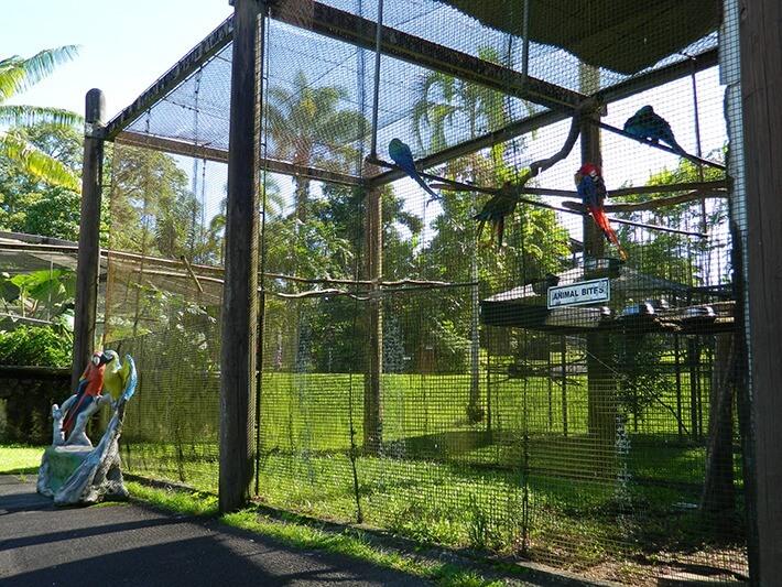 Panaewa Rainforest Zoo, Big Island