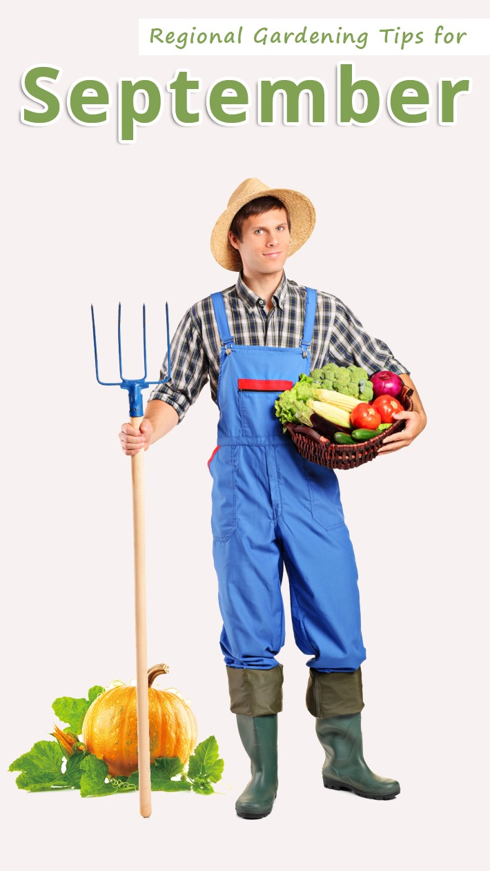 Regional Gardening Tips for September