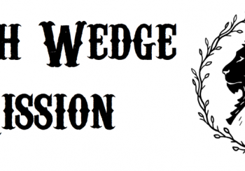 A New RIC Community: South Wedge Mission (Rochester, NY)