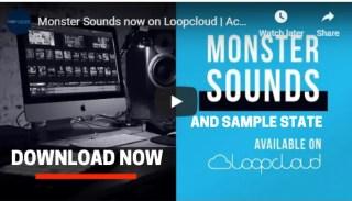 loopcloud sample