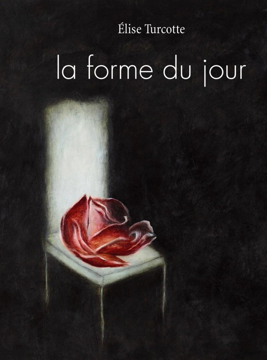 Élise TURCOTTE, la forme du jour, Editions Le Noroit, 2016, 20,20 € ;