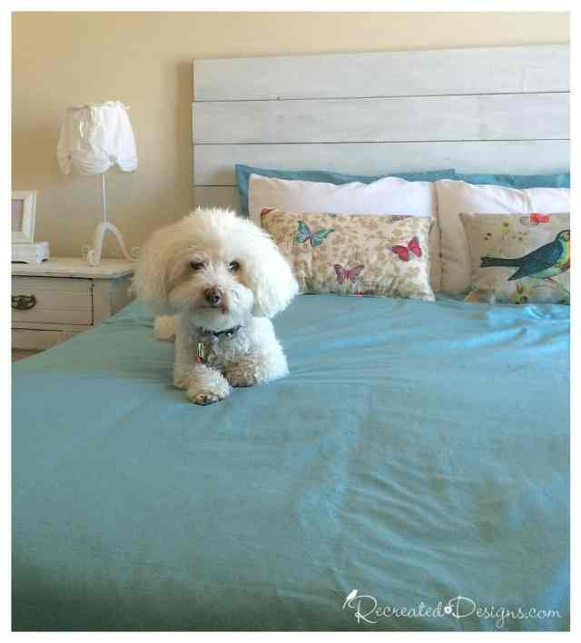 diy-wood-headboard-dog
