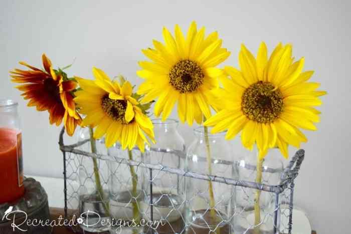 Fall flowers in glass jars