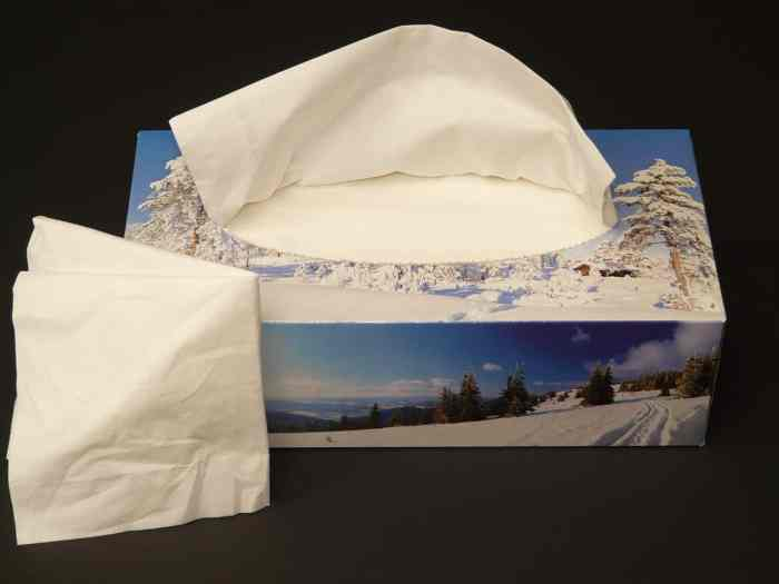 kleenex box with a winter scene
