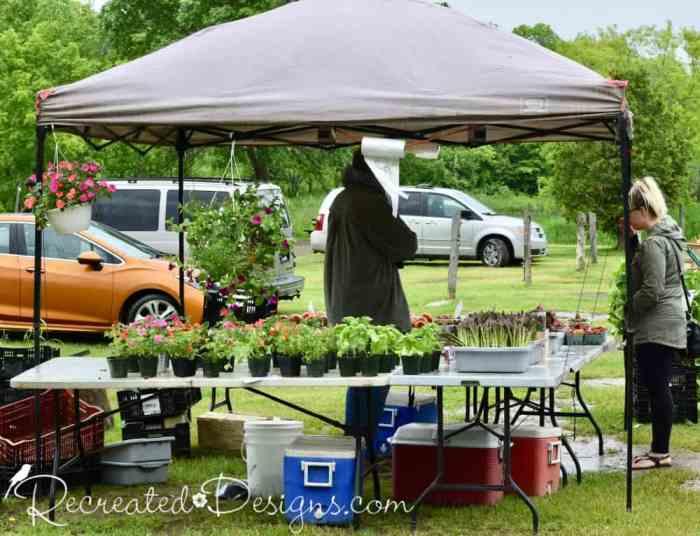 farm fresh foods Finnegans Market, Hudson Quebec