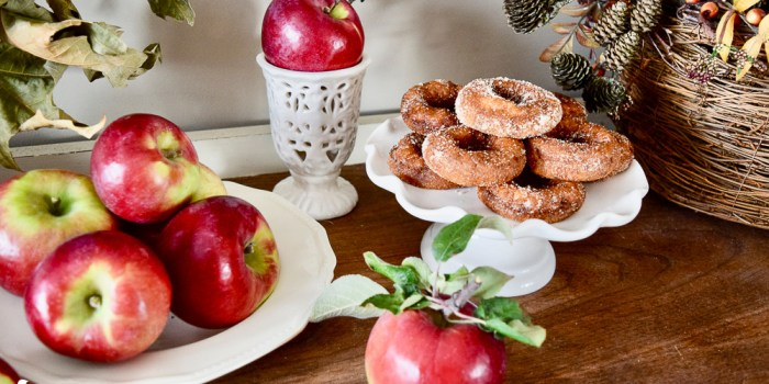 The Perfect Fall Apple Orchard Day Trip