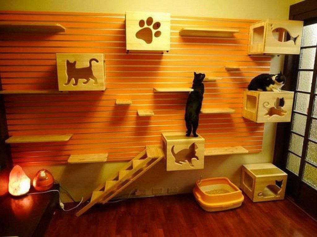 Casas y muebles diseados para los amantes de los gatos