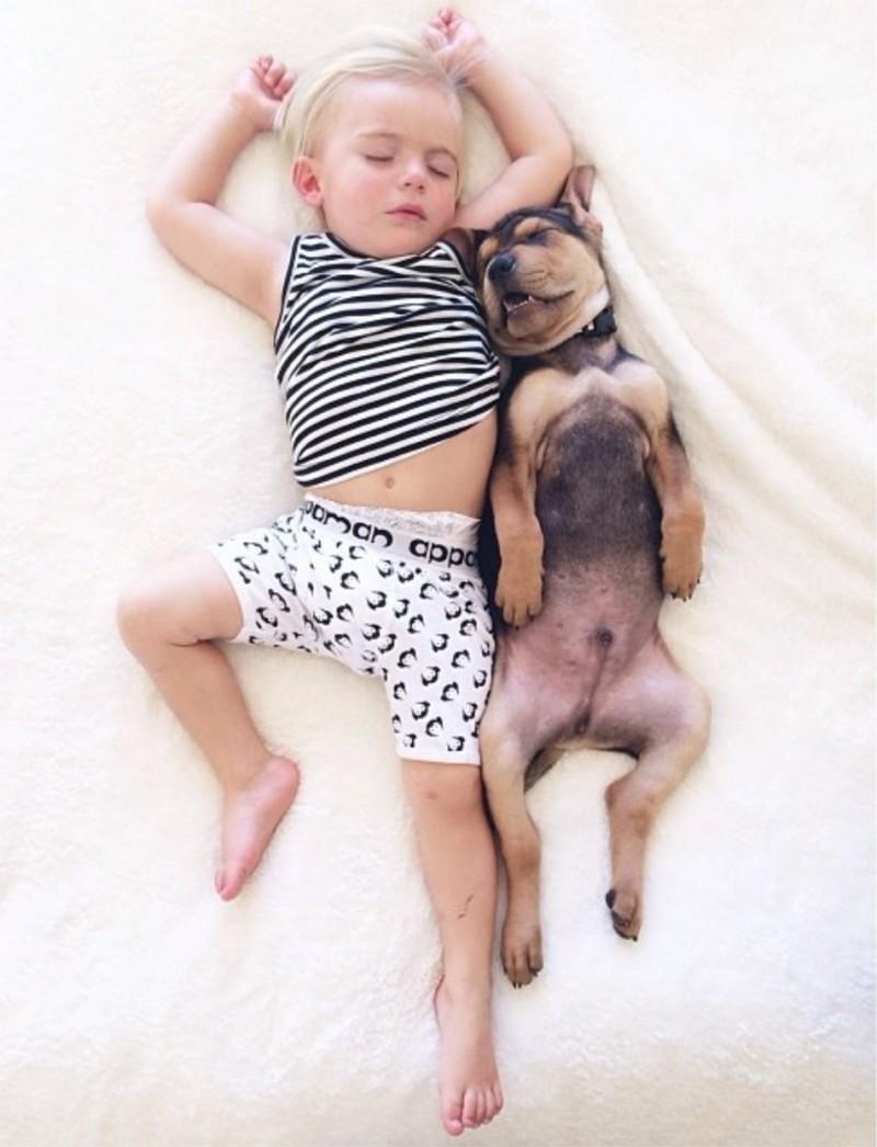 Bebe y perro duermen juntos por varios meses sus siestas