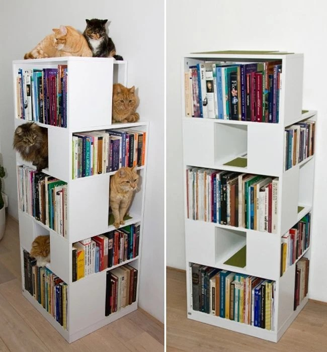 20 Trucos que los amantes de los gatos amarn
