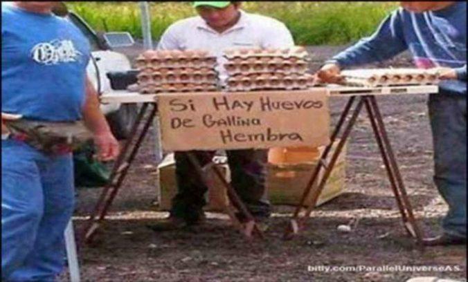 señor vendiendo huevos de gallina hembra